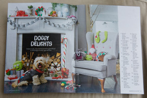 Hugo also appears inside the Pets at Home catalogue.