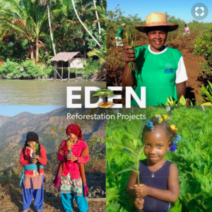 1 Tree Cards is working with the Eden Reforestation Project, whereby for every card sold the charity will plant a tree