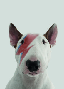 Above: Jimmy paying homage to Ziggy Stardust is one of the designs from Mint.