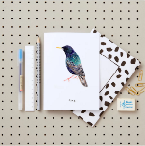 Blank inside is one of the publishers whose designs feature on the Holly & Co site.