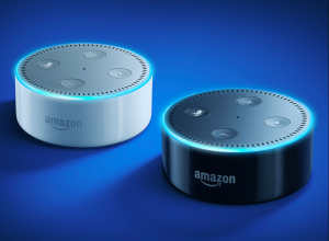 Amazon Echo devices will soon be able to be used to order products from Morrisons.