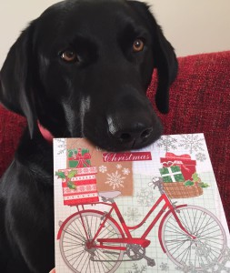 Even the pooch from Red Berry Cards was involved!