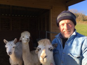 Paul Haines, consultant to CBG, with some of his real life All Creatures alpacas!
