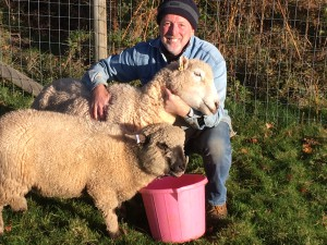 On course to own a flock of 100 sheep in 2018, the plush sheep character in the All Creatures range is Paul's personal favourite.