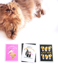 The Art File is launching 14 new everyday collections this month, including Cool for Cats.