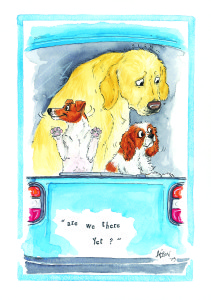 Alison's Animals from Splimple captures the antics and characteristics of our pets.