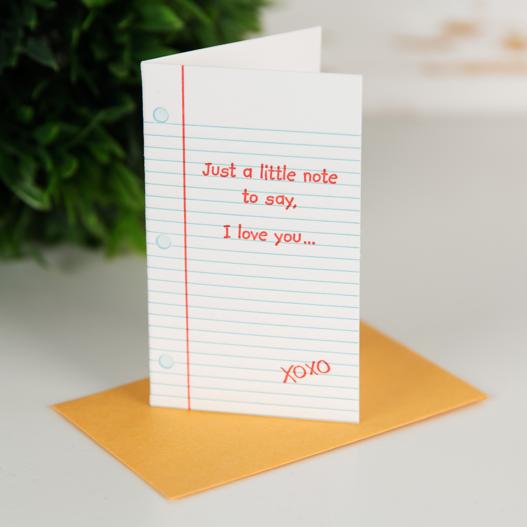 Widdop And Co Ramps Up Its Commitment To Greeting Cards Pg Buzz