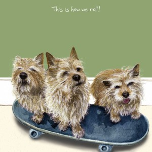 There are lots of different dog breeds within The Little Dog Laughed's ranges.
