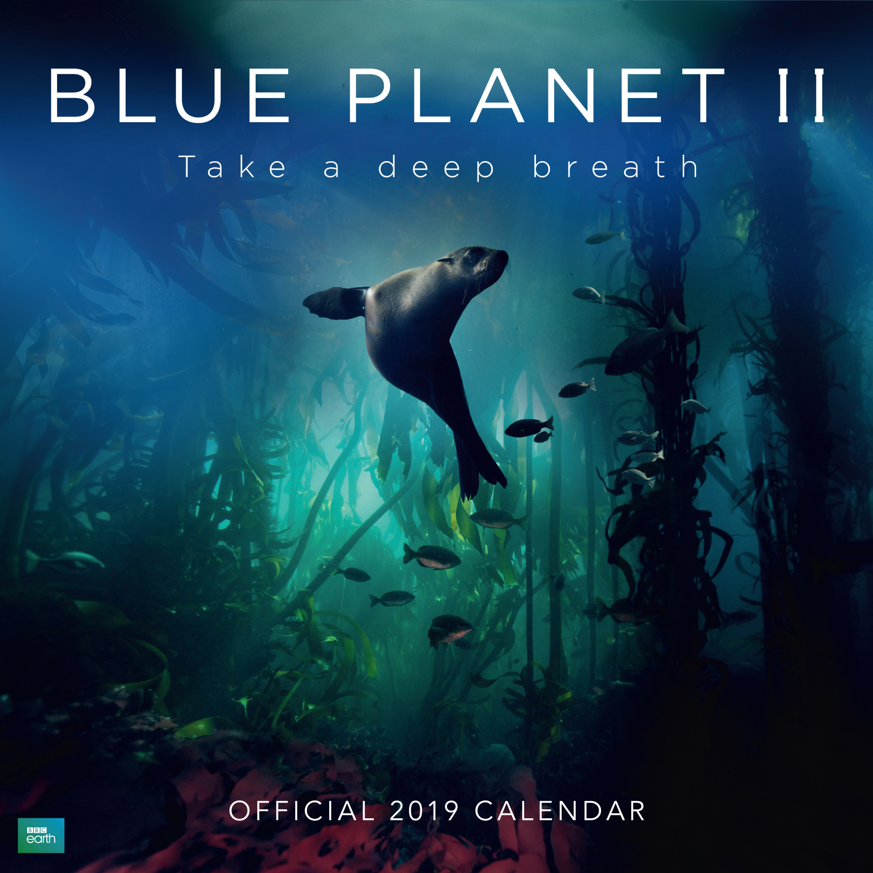 Above: Danilo's BBC Blue Planet II 2019 won the Best Animal Kingdom Calendar award in The Calies.