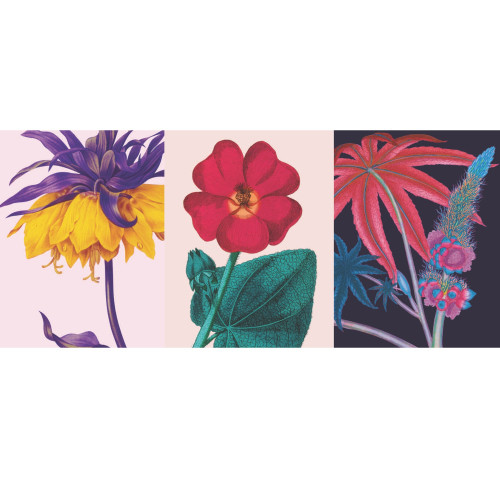 story 2 feature pic-46