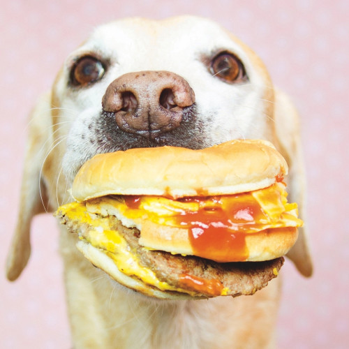 story 4 feature pic-47