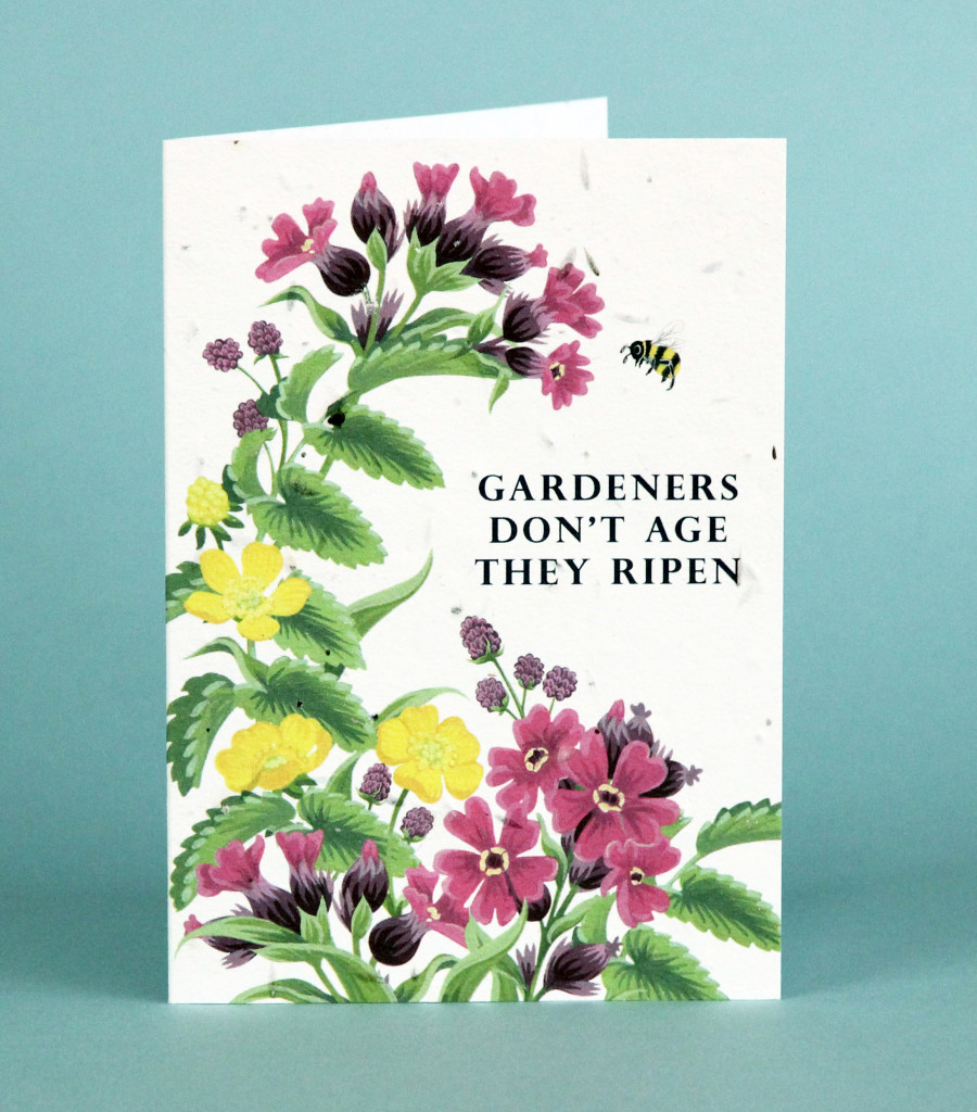Above: The designs feature flowers that will grow when the card is planted in the ground.