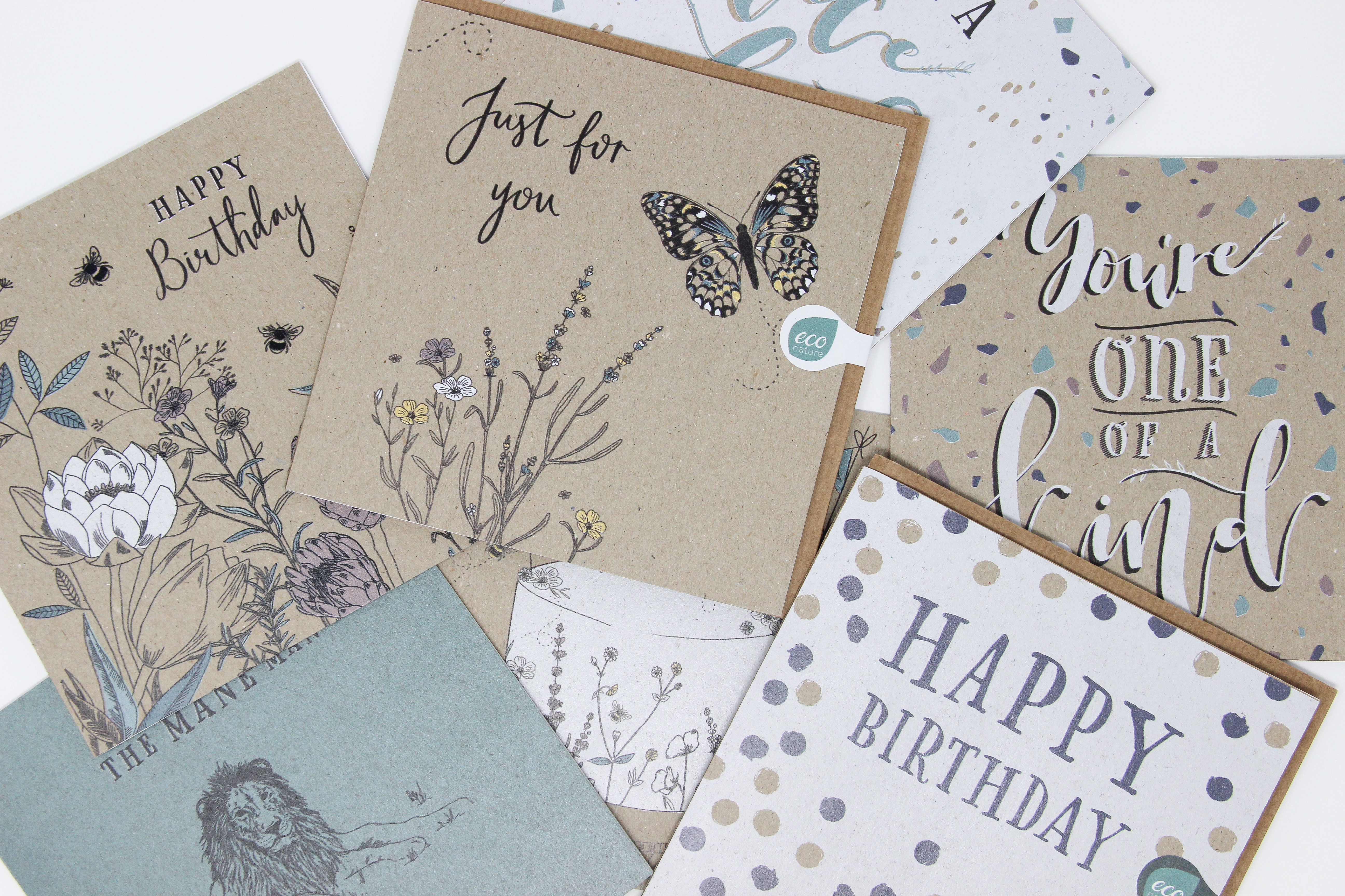Above: The everyday greeting cards echo the botanical, hand crafted look of the giftwrappings.
