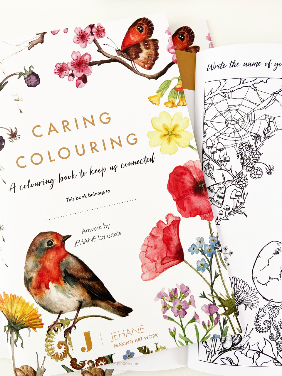 Above: Helen Ahpornsiri artwork appears on the front cover of the colouring book. Her art features in the Wild Press range for Museums & Galleries.