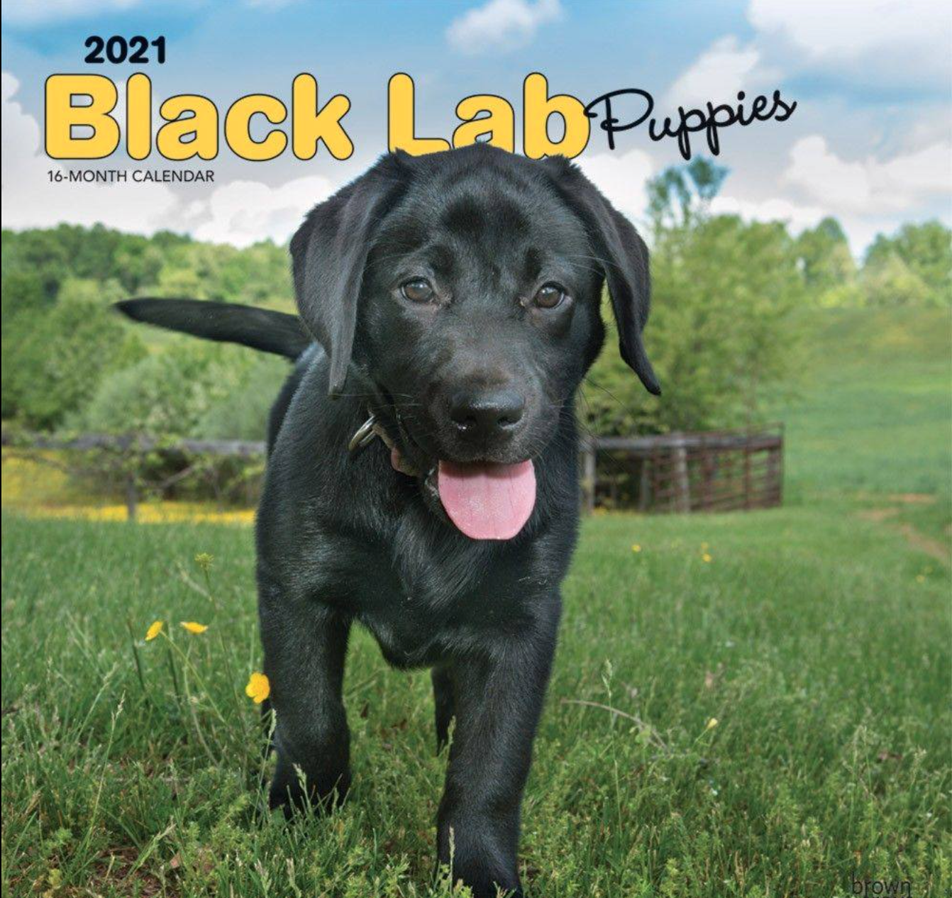 Above: Specific dog breed calendars have historically been a big seller for BrownTrout.
