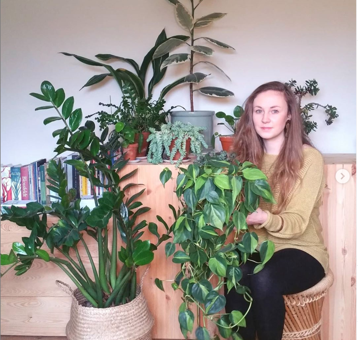Above: Lianne Harrison, founder of Paper Whale (and whose design work forms the livery of The Retas this year), with some of her plant 'babies'.