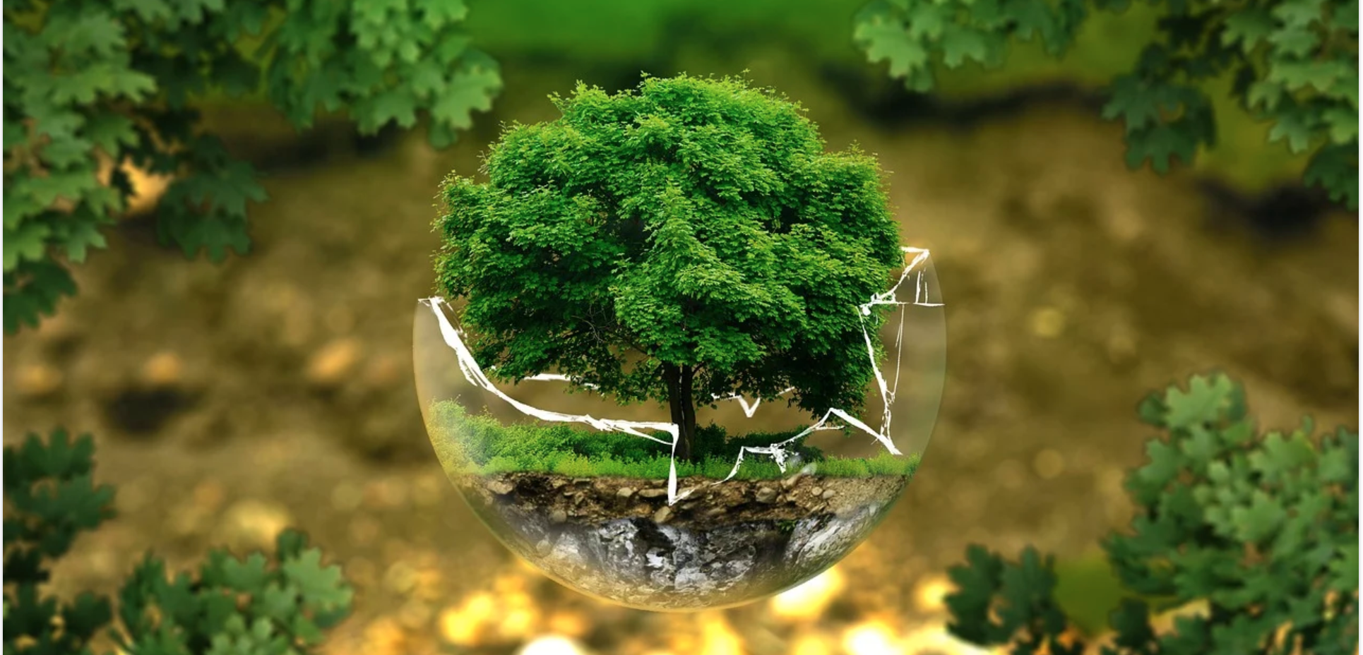 Above: For over the last two years UKG has been looking at ways of improving its environmental credentials across its business.