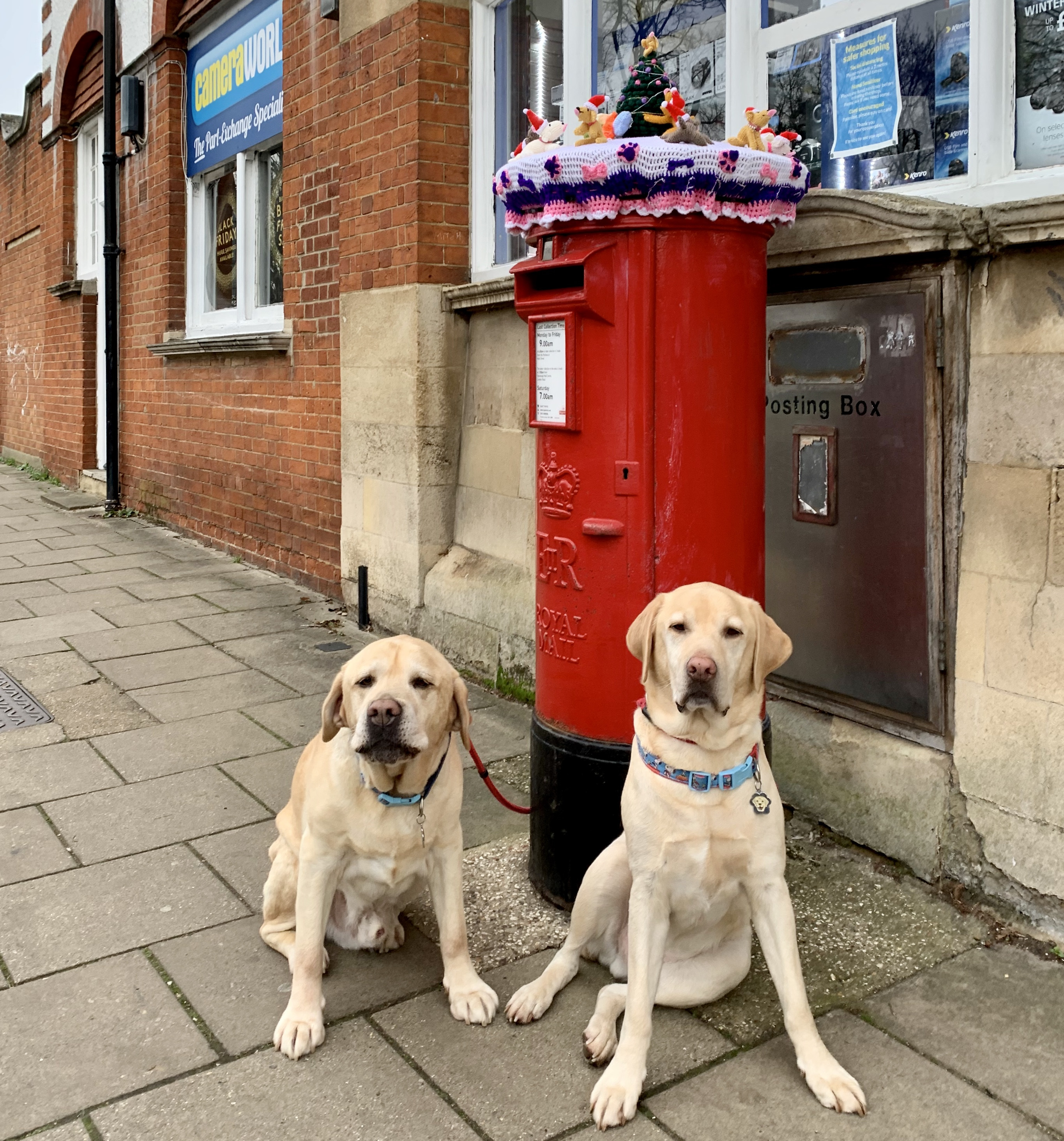 Above: Big Ben and Orberry, two of The Ponks helping to promote a postbox topper that was made by Jo's talented Auntie to bring some cheer to Stevenage High Street and raise funds for the Mayor's charities.