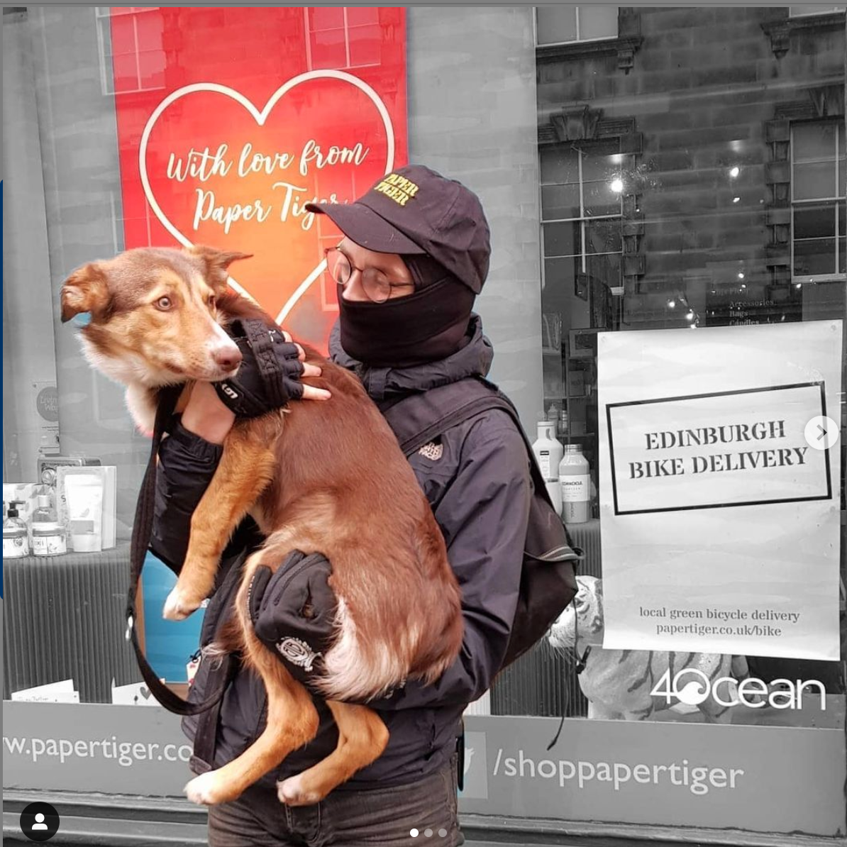 Above: Paper Tiger in Edinburgh is offering a bicycle delivery service for Valentine's Day – Clementine shows Liam some love before he heads off on his delivery duties.