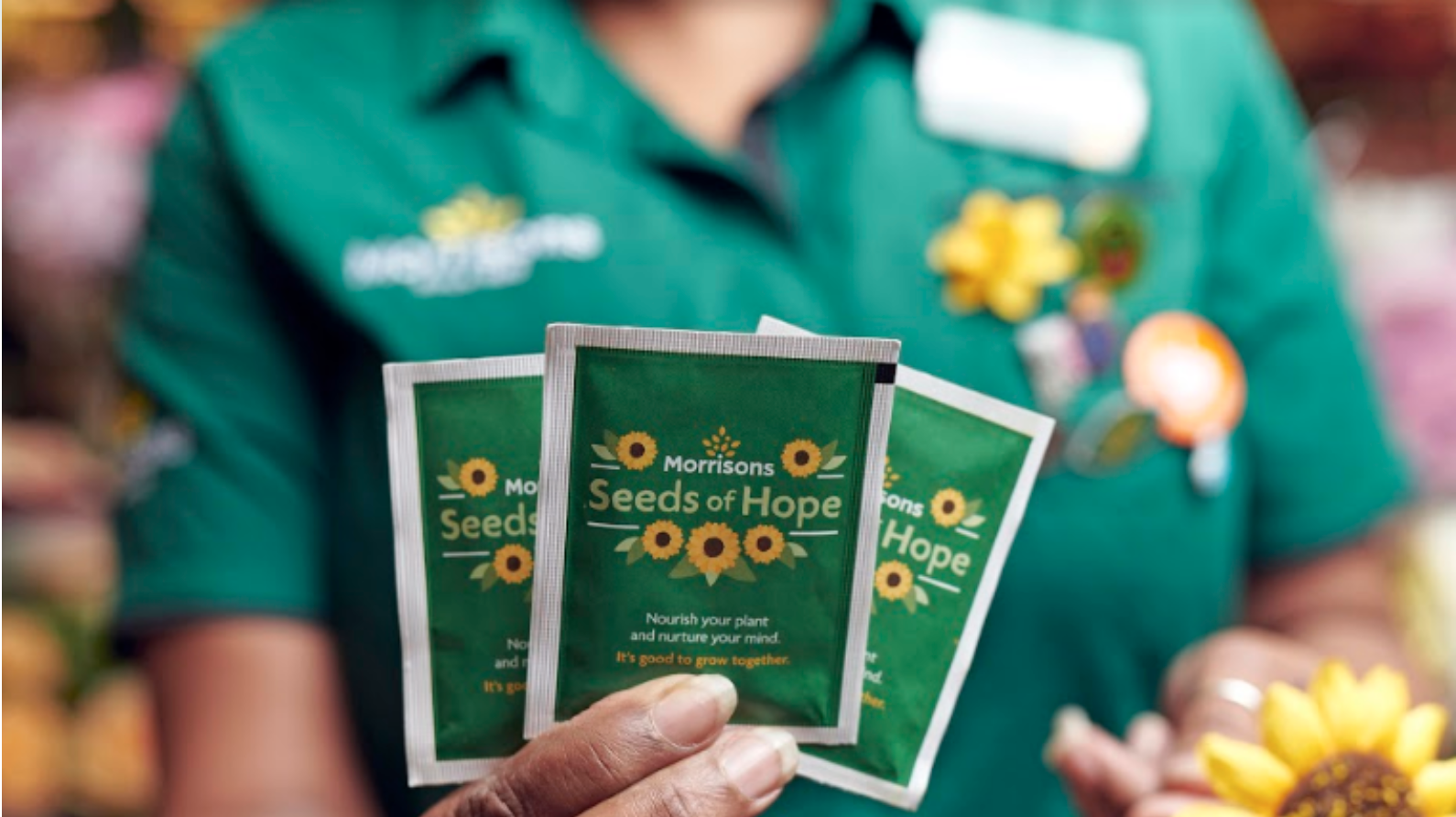 Above: The postcards follow on from the 25 million sunflower seeds Morrisons has given away.